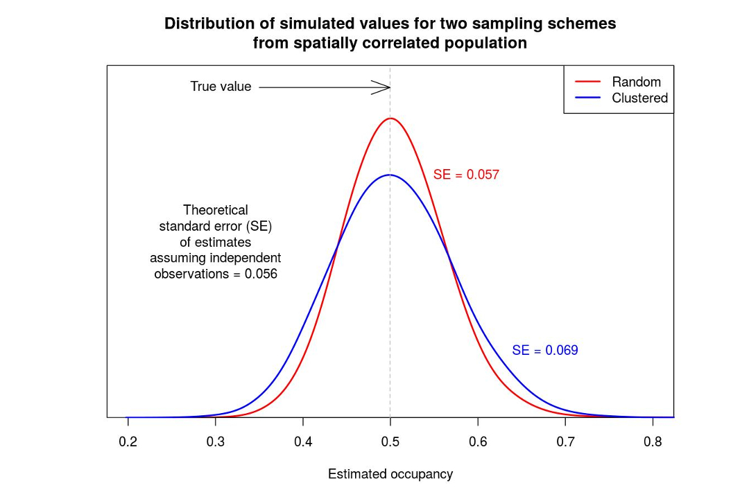 Spatial correlation and the independence assumption with occupancy modelling